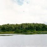 ป่าชะโนดสถานที่ท่องเที่ยวที่เต็มไปด้วยความลึกลับและน่าอัศจรรย์